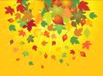 Fall & Winter Fashion-Color Trends